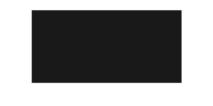 BAG Začin